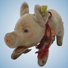 Steiff Medium Very Early Postwar Jolanthe Mohair Pig With All And Awesome IDs