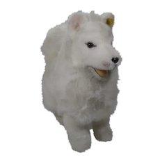 Steiff Soft Plush Pomeranian Dog With IDs