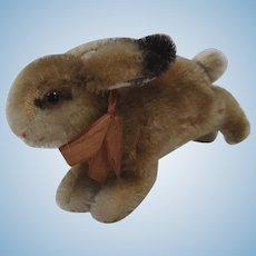 Steiff Smallest Hoppy Rabbit With IDs