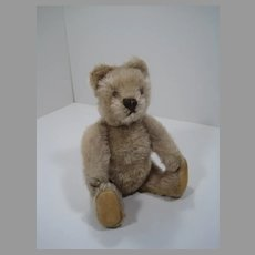 Steiff Almost Smallest Early Postwar Caramel Original Teddy Bear