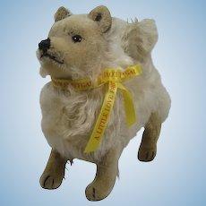 Steiff Prewar Miniature Pomeranian With ID