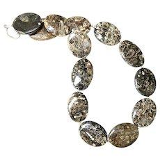 Unique Fossilized Turritella Agate Necklace