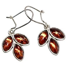Golden Baltic Amber Drop Earrings