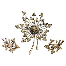 Signed Pennino Sterling Floral Spray Brooch & Earring Set c. 40