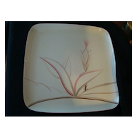 Vintage Porcelain China Square Serving Platter Winfield Rose Wheat / Dragon Flower Design