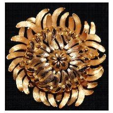 TRIFARI  Gilt Chrysanthemum Brooch/Pin, Signed