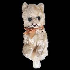 "SCHUCO CAT Sitting 9"" White Mohair - Glass Eyes - Very Old"