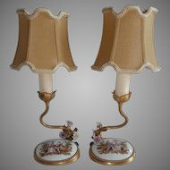 Porcelain Medallion Lamps....