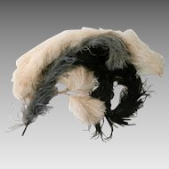 Vintage Hat Feathers/ Early 1900's...
