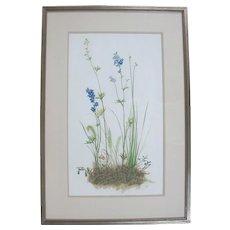 Original Tempera Botanical Floral Plant Painting by Oregon Artist Sally Haley