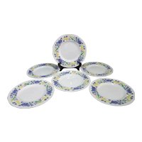 DEVON English George JONES Colorful Botanical Flower MAJOLICA Desert Plate Set