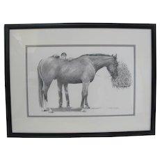Janey BELOZER Framed Original Graphite on Paper of HORSE Grooming