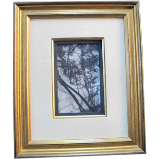 Framed CHINESE Natural DREAM STONE Nature Art - Black & White Contrasting TREES