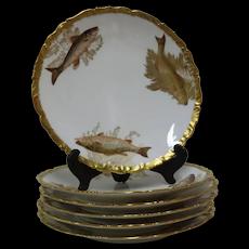 Antique LIMOGES France Hand Painted FISH & SEAWEED Design Gilt Trim Plate Set
