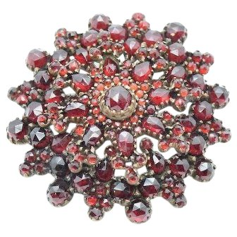Antique Bohemian Garnet Snowflake Brooch