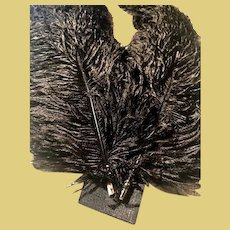 Two Beautiful 20inch long each Black Ostrich Plume Feathers for Fancy Victorian Hats and other apparel_THICK and LUSH