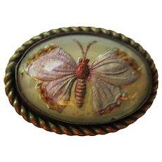 Vintage VICTORIAN MOTH Enamel Bug 1880s C-clasp