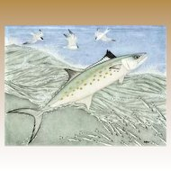 Kim Mosher Spanish Mackerel Limited Edition Framed Print, Signed 427/1000