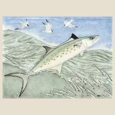 Kim Mosher Spanish Mackerel Limited Edition Framed Print, Signed 427/1000