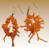 Gorgeous Salmon Coral Stick Branch Earrings