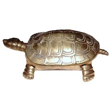 Large Solid Brass Turtle Trinket Box