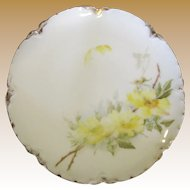 Beautiful H & C Limoges Hand Painted Floral Cabinet Plate