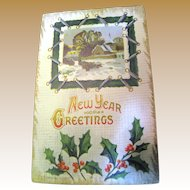 """Early 1900's, """"New Years Greetings"""" Embossed Post Card ."""