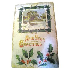 "Early 1900's, ""New Years Greetings"" Embossed Post Card ."