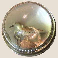 Old Domed Glass Paperweight w/ Seagull