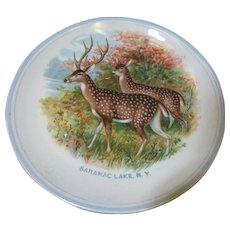 Benjamin Harker Pottery Souvenir Plate, Saranac Lake N.Y.