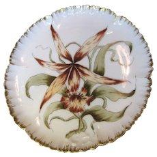 Antique1882 Haviland Limoges Hand Painted Cabinet Plate