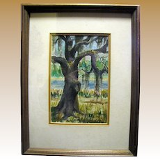 Vintage Southern Watercolor Study of a Live Oak by Mary May