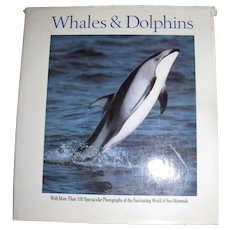 Whales & Dolphins by Victor Cox (Vic) Large Hardback
