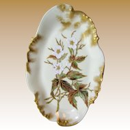1890's Charles Haviland French Limoges Hand Painted Dresser Tray