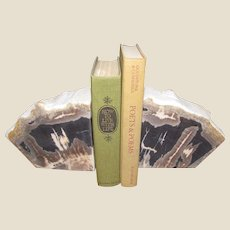 Large Polished Petrified Wood Bookends