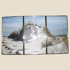 Triplicate (3 Panel) Acrylic on Board of Beach Dunes by R. Hultberg, Feb. 1987