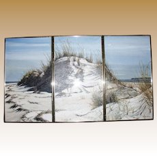 Triplicate (3 Panel) Acrylic on Board of Beach Dunes by R. Hultberg, Feb. 1987
