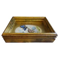 Vintage Shadow Box Butterflies Flowers Gold Frame Aesthetic 3D Charming