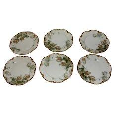 Antique Haviland Feu De Four Limoges Porcelain Set of 6 Plates in FeuDeFour gold under rims