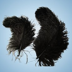 Lot of 2 Vintage Black Ostrich Feather Plumes