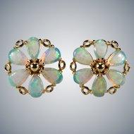 Natural Opal Flower Stud Earrings 14k Gold Pierced Opal Studs