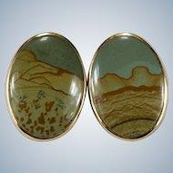 Natural Owyhee Jasper Earrings 14k Gold Picture Jasper Disc Pierced Studs