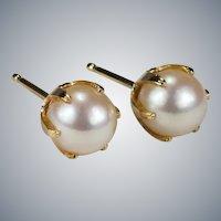 Caged Akoya Pearl Stud Earrings 10k Genuine Cultured Pearl Studs