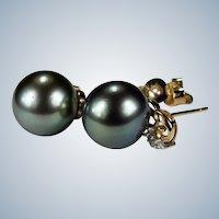 South Sea Tahitian Black Pearl Stud Earrings 14k Gold 11mm Pierced Post Studs