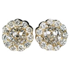 Crown Of Light Diamond Studs 2.54ctw 14k Gold Cluster Pierced Post Screw Back Flower Cluster Stud Earrings
