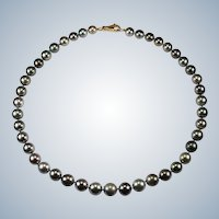Tahitian Black South Sea Pearl Strand Necklace 14k Gold