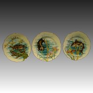 French antique porcelain set of three fish plates turtle