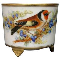 Royal Worcester hand painted miniature bird floral vase