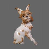Austria Augarten Wien porcelain dog figurine Brussels Griffin