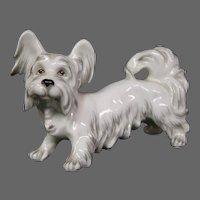 Austria Augarten Wien porcelain dog figurine unusual white long hair